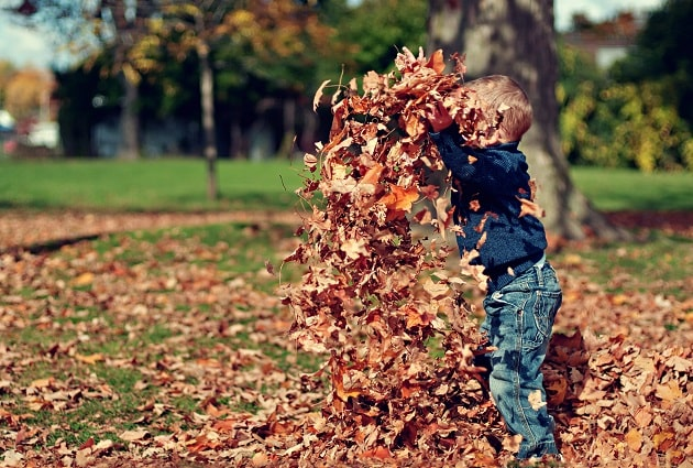 Boy with leaves-min