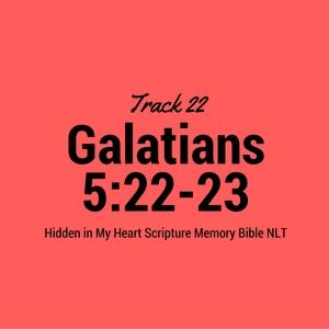 Track 5 (4)
